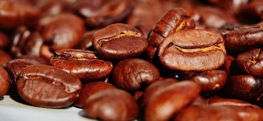 Najlepsza kawa z palarni